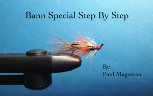Bann Special by Paul Magowan